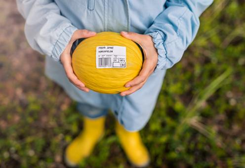 Eco-friendly and Sustainable Labels
